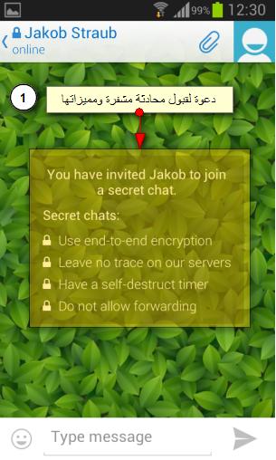 بعض مميزات المحادثات السرية والمشفرة